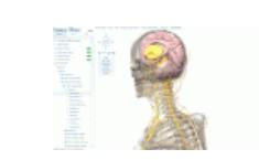Visible Body是一个免费的完全3D系统