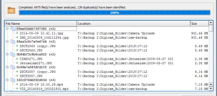 双文件扫描程序 查找重复的文件