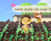 Animal Crossing玩家如何保护自己免受海盗侵害